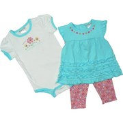 Newborn Girl Clothing - Cute Newborn Girl 3 Piece Legging Set with Pretty Ruffled Top with Flower Embroidery and Cap Sleeves, Bodysuit with